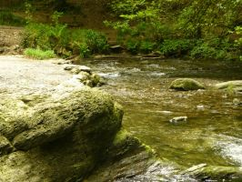 Lydford Gorge: View 144 by yaschaeffer