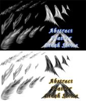 Abstract Feather Brush Set by CoreyEacret