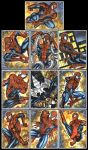 SPIDER MAN SKETCH CARDS by AHochrein2010