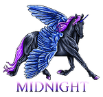 Midnight Pixel Commission by RejectAll-American