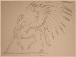 Pegasus 2 by Chequer