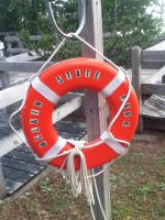 The Life Preserver of Mclain State Park by socks-15