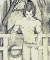 Vegeta by tomuchtime
