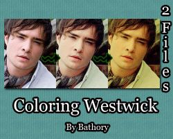 Ed Westwick Coloring by Bathory123