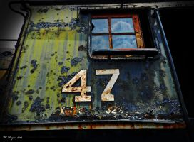 47 by wroquephotography
