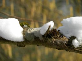 Last signs of winter? by Agatje
