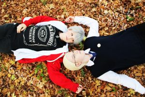 A.P.H. -Germany and Prussia Gakuen -Falling Leaves by PinoStrawberry