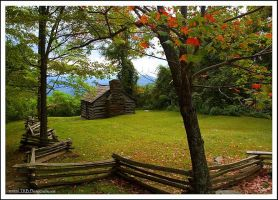 The Trail Cabin by TRBPhotographyLLC