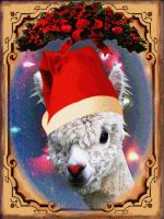 Rudolf The Red Nosed...Llama? by PridesCrossing