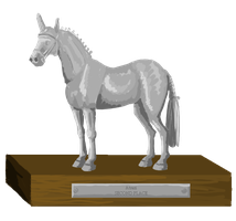 Sport Horse Inspection Trophy - Second place by femalefred