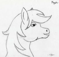 Magpie a Pony experiment by Tesa-studio