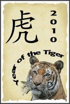 Year of the tiger by GabbX98