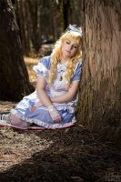 Alice In Wonderland: When The Lost, Dream... by Glass-Rose-Prince