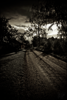 Road view by Grall19