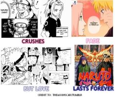 NARUHINA: Love lasts forever by lunaneko144