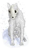 Contest Entry - Ghost by ShattenWolf