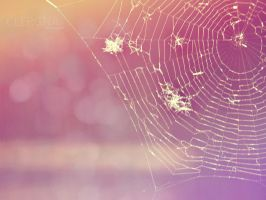 web by Clergna