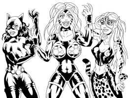 DC Catgirls by strangefour
