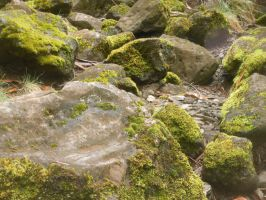 Mossy Rocks by discoinferno84
