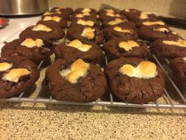 Hot Chocolate Cookies by Rose15r15