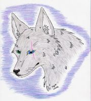 White wolf REALISTIC OMG by Wolf-mutt