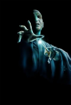 http://th08.deviantart.net/fs46/300W/i/2009/167/f/2/Lord_Voldemort_by_soul_whisper.jpg
