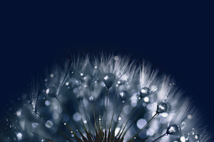 Blue For Samsung Galaxy S4 1920x1280 HD by kingwicked