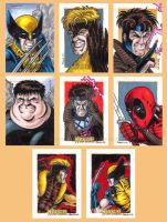 X-Men Origins Wolverine Cards A by tonyperna