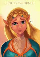 Princess Zelda - Botw by IcedEdge