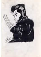 Wolverine II by rolthomaster