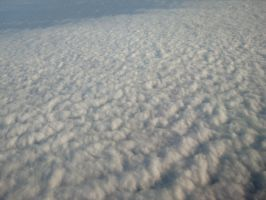 Over Germany by Cabbages