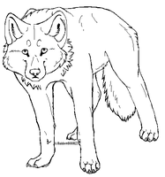 More Wolf Lines.. by RainbowBOXORZZ