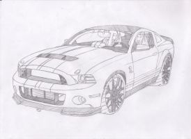 2013 Shelby GT500 by jmig3