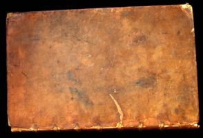 old books - dictionary 05 by barefootliam-stock