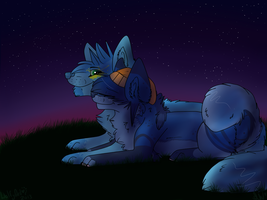 your heart shines as bright as the stars :CE: by TOPAZxWOLF