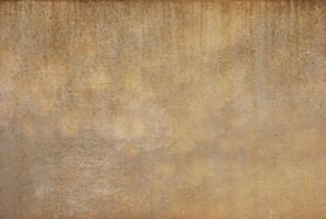 T. Labine Texture Stock by redwolf518stock