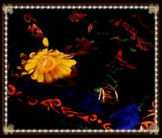 a yellow flower by pickerel