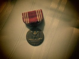 Medal for Good Conduct by Wolfie303