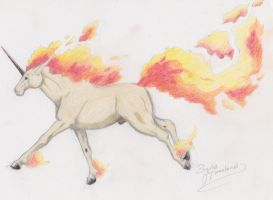 Khraim the Rapidash IN COLOR by shiraffen
