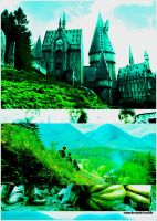 Harry Potter POA collage by Miss-deviantE