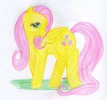 Fluttershy Too Shy by Nethilia
