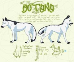 Botana reference sheet by novablue
