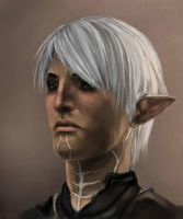 Dragon Age 2 - Fenris by teuf-eL