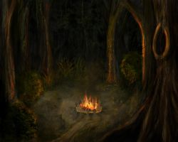 Campfire in the Forest by Such-A-Dreamer