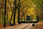 Berlin - Tiergarten by PhilsPictures