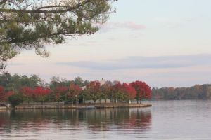 Autumn on the Lake by Rjet33