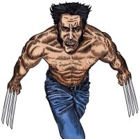 Wolverine - Colour by allistermac
