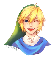 Hyrule Warriors Link by NemoraFarraige