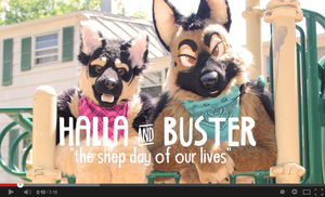 Halla and Buster (Video) Shep Day of our Lives by Katmomma