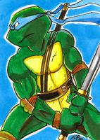 Leonardo TMNT Art Card by kevinbolk